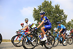 The peloton including Enric Mas Nicolau (ESP) Quick-Step Floors and World Champion Alejandro Valverde (ESP) Movistar Team during the 99th edition of Milan-Turin 2018, running 200km from Magenta Milan to Superga Basilica Turin, Italy. 10th October 2018.<br /> Picture: Eoin Clarke | Cyclefile<br /> <br /> <br /> All photos usage must carry mandatory copyright credit (© Cyclefile | Eoin Clarke)