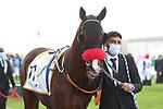 February 19 2021: Scenes from King Abdulaziz Racetrack, Riyadh, Saudi Arabia. Shamela Hanley/Eclipse Sportswire/CSM