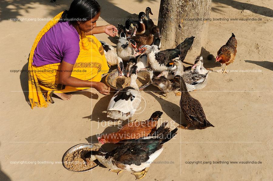 BANGLADESH Madhupur, ethnic group Garo, the Garo community is matriarchy based, woman Kalpona Ritchil run a poultry on microcredit base / Bangladesch, Region Madhupur - Unterstuetzung von Garo Familien mit Kleinkrediten und Trainingsprogrammen zur Existenzsicherung , Garos sind eine christliche u. ethnische Minderheit , Frauen ueben ein Matriarchat aus, Garo Frau Kalpona Ritchil im Dorf Idilpur mit Gefluegelzucht auf Mikrokreditbasis zur Erzielung von Einkommen