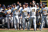 Nick Halamandaris #19 of the California Golden Bears is greeted by teammates including Logan Scott #20 and Devin Pearson #27 after hitting a home run during a baseball game against the UCLA Bruins at Jackie Robinson Stadium on March 23, 2013 in Los Angeles, California. (Larry Goren/Four Seam Images)