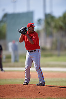 Washington Nationals pitcher David Ramos (59) gets ready to deliver a pitch during a minor league Spring Training game against the St. Louis Cardinals on March 27, 2017 at the Roger Dean Stadium Complex in Jupiter, Florida.  (Mike Janes/Four Seam Images)