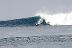 Long Reef bombies Sat 9 August 2014 am