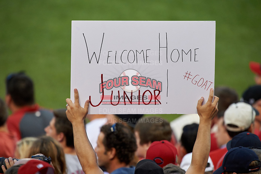 Fan holding a sign for Ken Griffey Jr. during the MLB Home Run Derby on July 13, 2015 at Great American Ball Park in Cincinnati, Ohio.  (Mike Janes/Four Seam Images)