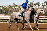 November 17, 2018: #2 Coliseum, ridden by Joseph Talamo, in the post parade before race 1 on November 17, 2018, at Del Mar Thoroughbred Club in Del Mar, CA. ( Photo by Casey Phillips/Eclipse Sportswire/CSM)
