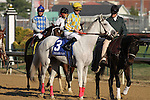 Dancinginherdreams with Julien Leparoux in the post parade of The Pocahontas (grII) at Churchill Downs. 10.31.2010..photo Ed Van Meter