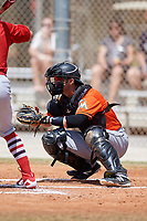 Miami Marlins Austin Nola (28) during a Minor League Spring Training game against the St. Louis Cardinals on March 26, 2018 at the Roger Dean Stadium Complex in Jupiter, Florida.  (Mike Janes/Four Seam Images)