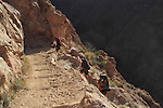 Backpackers ascend the Bright Angel Trail from Phantom Ranch to the South Rim, Grand Canyon National Park, Arizona. .  John leads hiking and photo tours throughout Colorado. . John offers private photo tours in Grand Canyon National Park and throughout Arizona, Utah and Colorado. Year-round.