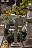 "Il Cimitero acattolico di Roma (detto anche Cimitero degli Inglesi o anche Cimitero dei protestanti) si trova nel quartiere di Testaccio..Il Cimitero acattolico di Roma è il luogo dove vengono sepolti i non-cattolici. E' riservato a quelli stranieri, di ogni nazionalità..Anche Antonio Gramsci è stato sepolto qui, considerato ""straniero"" rispetto alla cultura dominante..Non-Catholic Cemetery of Rome is located in the district of Testaccio. .Non-Catholic Cemetery of Rome is the place where they are buried non-Catholics..Also known as The Protestant Cemetery or Englishmen's Cemetery..It is reserved for those foreigners of all nationalities. .Even Antonio Gramsci was buried here, which is considered ""foreign"" than the dominant culture...."