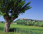 ITA, Italien, Marken, Dorf Montecassiano bei Macerata   ITA, Italy, Marche, village Montecassiano near Macerata