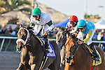 13 February 2010:  Kays and Jays with jockey Jose Lezcano wins the Hurricane Bertie Stakes at Gulfstream Park in Hallandale Beach, FL.