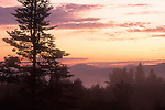 Sunrise in the White Mountains, Mt. Lafayette in the Distance