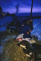 S Engholm Boots Dogs Sunrise Takotna Chkpt 99 Iditarod AK