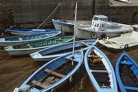 Europe/France/Poitou-Charentes/17/Charente Maritime/Ile d'Oléron: Env. du Chateau d'Oléron - Port ostréïcole
