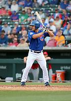 Tyler Durna - Chicago Cubs 2019 spring training (Bill Mitchell)