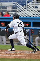 Empire State Yankees designated hitter Jack Cust #29 during a game against the Norfolk Tides at Dwyer Stadium on April 22, 2012 in Batavia, New York.  Empire State defeated Norfolk 6-5, the Yankees are playing all their games on the road this season as their stadium gets renovated.  (Mike Janes/Four Seam Images)