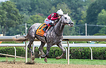 08072021:#7 Stellar Tap ridden by Ricardo Santana Jr.gives  trainer Steven Asmussen his win #9446 on Whitney Day at Saratoga Race Course<br /> Robert Simmons/Eclipse Sportswire