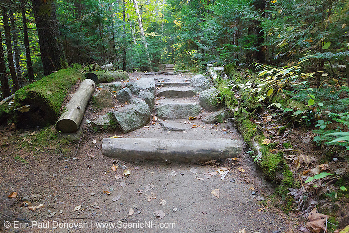 Natural looking stone steps along Zealand Trail in Bethlehem, New Hampshire USA during the autumn months. This trail utilizes sections of the old Zealand Valley Railroad (1886-1897).