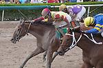 wins the $250,000 Affirmed Stakes. Gulfstream Park,  Hallandale Beach (FL). 09-06-2014. Arron Haggart/ESW/CSM