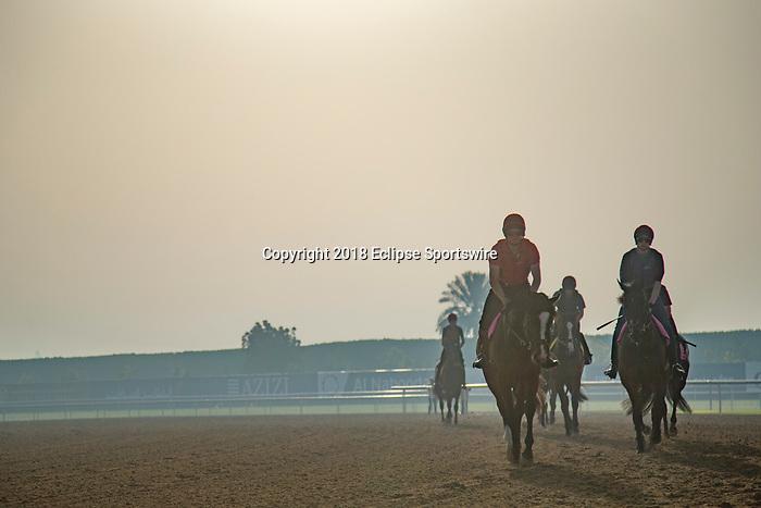 DUBAI,UNITED ARAB EMIRATES-MARCH 30: Aidan O'Brien's horses on the dirt track at Meydan Racecourse on March 30,2018 in Dubai,United Arab Emirates (Photo by Kaz Ishida/Eclipse Sportswire/Getty Images)