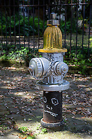 New Orleans, Louisiana.  Fire Hydrant, Garden District.