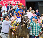 May 16, 2014: on Black-Eyed Susan Day at Pimlico Race Course in Baltimore, MD. Scott Serio/ESW/CSM