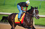 Prospective , trained by Mark Casse and to be ridden by Luis Contreras, works out in preparation for the 138th Kentucky Derby at Churchill Downs in Louisville, Kentucky on May 3, 2012