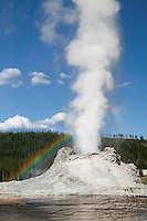 Castle Geyser erupting with a rainbow in its mist in Yellowstone National Park, Wyoming, USA