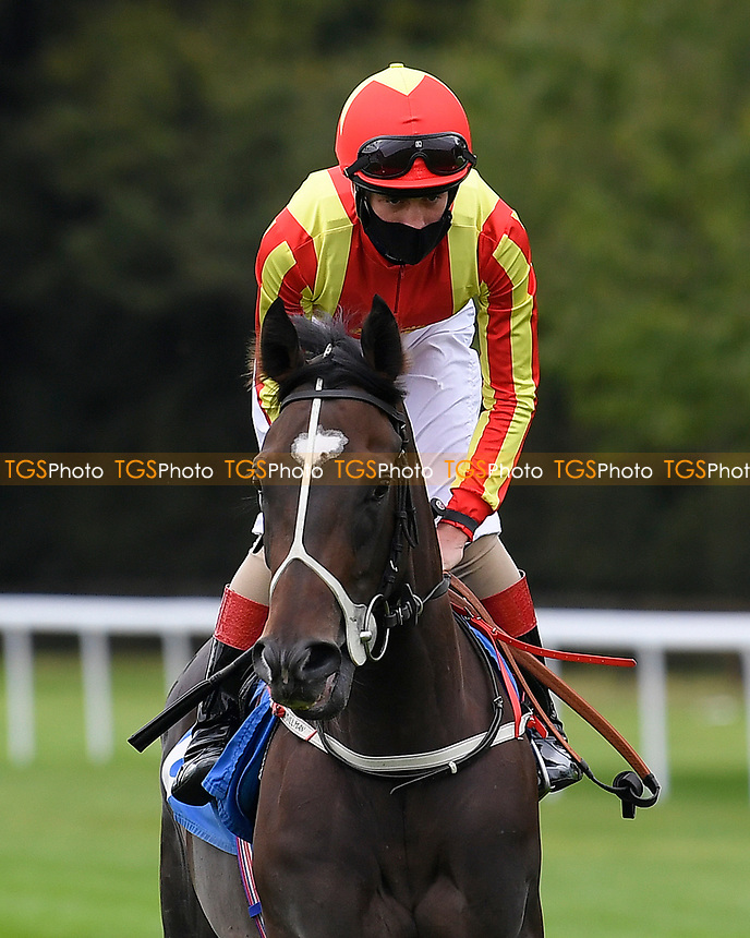 Crazy Luck ridden by George Rook goes down to the start of The Irish Stallion Farms EBF Fillies' Nursery Stakes       during Horse Racing at Salisbury Racecourse on 11th September 2020