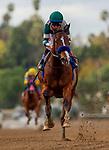 MAR 07: Gamine with Drayden Van Dyke breaks her maiden at Santa Anita Park in Arcadia, California on March 7, 2020. Evers/Eclipse Sportswire/CSM
