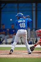 Toronto Blue Jays shortstop Miguel Hiraldo (18) at bat during an Instructional League game against the Philadelphia Phillies on October 7, 2017 at the Englebert Complex in Dunedin, Florida.  (Mike Janes/Four Seam Images)