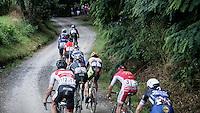 peloton twisting over gravel roads<br /> <br /> 1st Dwars door het Hageland 2016<br /> (pics by Léon Van Bon)