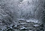 Winter landscape, Washington