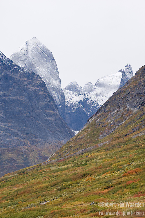 Snow covered peaks rise from the Tasermiut Fjord as the Dwarf Birch and Willow display their fall colours. Cape Farewell Youth Expedition 08(©Robert vanWaarden ALL RIGHTS RESERVED)
