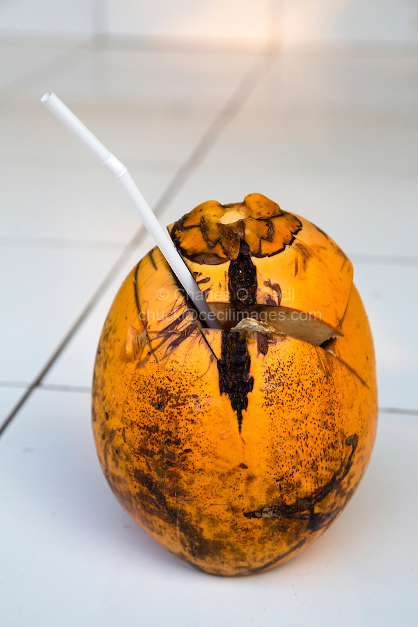 Bali, Indonesia.  Fresh Coconut Water Served to a Guest in a Balinese Village.