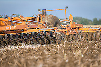 Simba Solo 600 cultivating oil seed rape stubble - Lincolnshire, August