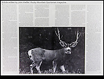 I took lots of natural history courses on my way to B.S. in zoology and M.S. degree in entomology.  That life-long interest adds to my outdoor photo tours.<br /> Rocky Mountain Sportsman magazine article by John Kieffer.