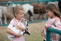 Ruth Huckeba, 6, (left) and her friend Mila Coleman, 7, look at a baby goat Monday Oct. 11, 2021 at Farmland Adventures in Springdale. Monday was Mother's Day Out at Farmland which is normally closed on Mondays. There will be two more Mother's Day Out this season on Oct. 21 and 28. For more information about activities including a corn maze, pumpkin patch, pony rides, farm animals and pig races at Farmland Adventures visit www.farmlandadventures.com. Visit nwaonline.com/210001012Daily/  (NWA Democrat-Gazette/J.T. Wampler)