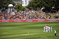 The Black Caps celebrate dismissing Kraigg Brathwaite for 0 during day two of the second International Test Cricket match between the New Zealand Black Caps and West Indies at the Basin Reserve in Wellington, New Zealand on Friday, 11 December 2020. Photo: Dave Lintott / lintottphoto.co.nz