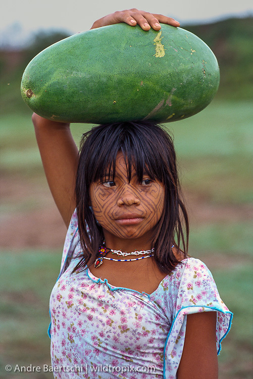 Cashinahua Indian girl carrying a watermelon, Boca Curanja, Alto Purus Communal Reserve, lowland tropical rainforest, Ucayali, Peru