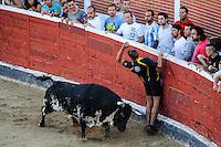 A man runs in front of a bull at the bullring in San Sebastian de los Reyes, near Madrid, on august 28, 2014. © Pedro ARMESTRE