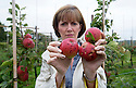 30/08/15<br />