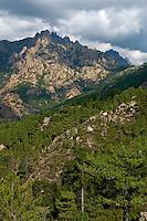 Corsica. Aiguilles de Bavella.  France. Corse..