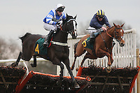 Race winner Grassfinch (R) in jumping action alongside Bobcatbilly ridden by Mr J Hodson during the West Norfolk Foxhounds & North Norfolk Harriers Novices Handicap Hurdle at Fakenham Racecourse, Norfolk - 17/02/12 - MANDATORY CREDIT: Gavin Ellis/TGSPHOTO - Self billing applies where appropriate - 0845 094 6026 - contact@tgsphoto.co.uk - NO UNPAID USE