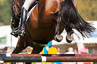 AUS-Catherine Burrell (URZAN) 2012 GBR-Subaru Houghton Hall International Horse Trial: CICO*** SJ-Saturday: 17TH