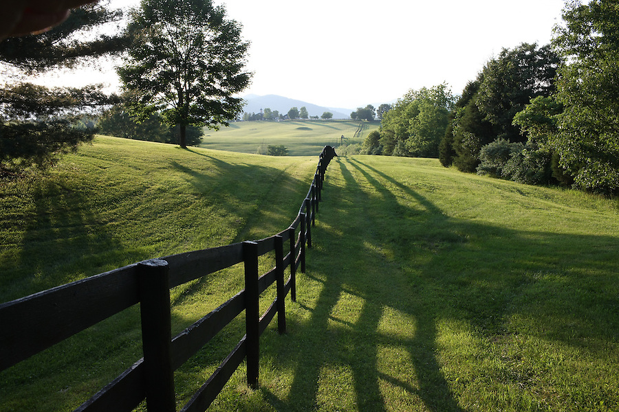 A fence line on a farm off Ridge Road in Albemarle County, Va. Photo/Andrew Shurtleff.