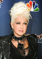 NEW YORK CITY, NY, USA - SEPTEMBER 17: Cyndi Lauper attends the 'America's Got Talent' Season 9 Finale held at the Radio City Music Hall on September 17, 2014 in New York City, New York, United States. (Photo by Celebrity Monitor)