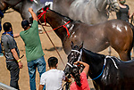 July 11, 2020: Horses get sprayed with water after the Dashing Beauty Stakeson Delaware Handicap Day at Delaware Park in New Stanton, Delaware. Scott Serio/Eclipse Sportswire/CSM