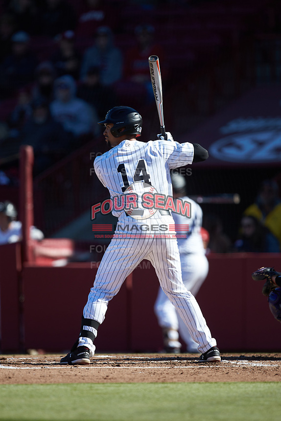 Noah Campbell (14) South Carolina Gamecocks at bat against the Holy Cross Crusaders at Founders Park on February 15, 2020 in Columbia, South Carolina. The Gamecocks defeated the Crusaders 9-4.  (Brian Westerholt/Four Seam Images)