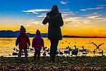 Deutschland, Bayern, Chiemgau, Chieming am Chiemsee: Familie bein Enten und Moewen Füttern zum Sonnenuntergang | Germany, Bavaria, Chiemgau, Chieming at Lake Chiemsee: family feeding ducks and gulls at sunset