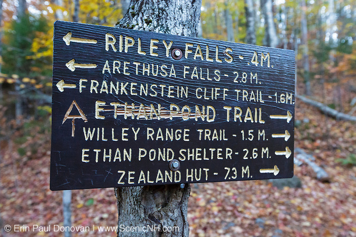 """Vandalism to the Ethan Pond Trail (Appalachian Trail) sign in the New Hampshire White Mountains. A hiker has scratched out """"Ethan Pond"""" and carved the Appalachian trail symbol into the sign. The photo is from October 2017."""